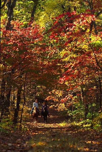 Horseback riders enjoying the fall colors on a trail at Sam A. Baker State Park