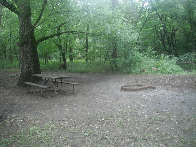 a picnic table and fire ring on a flat area next to a tree