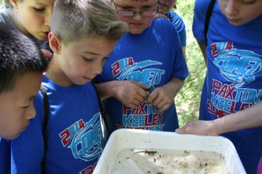 Kids looking at the aquatic life in a pan of water dipped from a creek